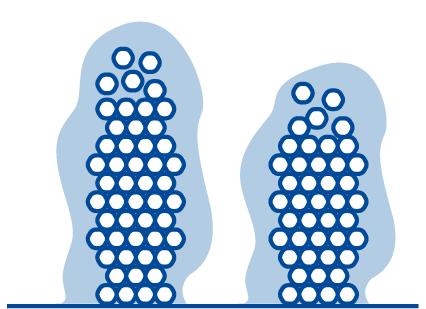 formacion-biofilms-superficie